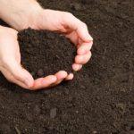 Vận chuyển đất phù sa trên toàn quốc.